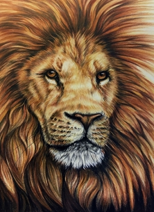 Art By Three  Lion: King Of The Jungle Art lions big cats jungle animals wildlife nature mane zoo for-him safari male lions personalised online greeting card
