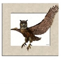 General owl framed painted wild animals birds personalise personalised online greeting card