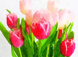 General Tulip tulips spring bunch flowers birthday anniversary  personalised online greeting card