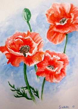 art Poppies  spring flowers watercolours for-him for-her art blank general all occasions mums nans aunts sisters her birthday red blue  floral fineart summer bouquets gardens meadows countryside nature pretty for-her remembrance  personalised online greeting card
