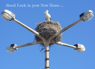 Home New home stork  personalised online greeting card