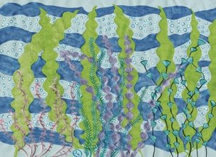art seaweeds underwater contemporary  sea plants colourful personalised online greeting card