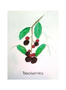 art fruits gardening country walks BLACKBERRIES personalised online greeting card