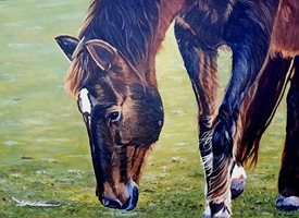 art general  horses animals personalised online greeting card