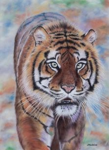 art tiger green eyes animal big cat wildlife personalised online greeting card
