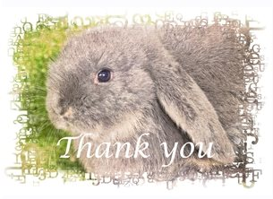 Thank animals rabbits bunny personalised online greeting card