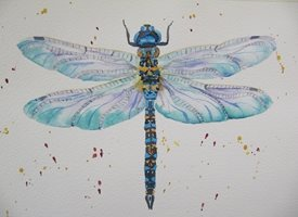 art Dragonfly, insects, bugs, wildlife, blue, personalised online greeting card