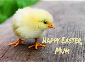 Easter Easter, Mum, Chick personalised online greeting card