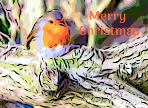christmas CHRISTMAS, Robins, birds, wildlife, nature, card, Xmas, seasons, greetings, redbreast, -child personalised online greeting card