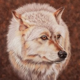 art general wolf animal wildlife personalised online greeting card
