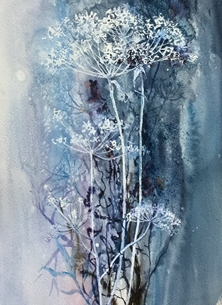 Sheila O'Brien Artwork Cow Parsley on Blue Art Wild Flowers