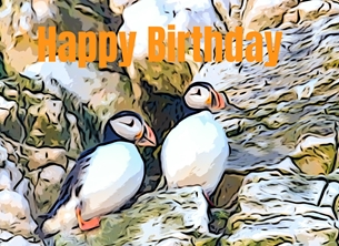 birthday BIRTHDAY, puffins, birds, son, daughter, grandson, granddaughter, him, her, boys, girls, nature, Child, Children for-him for-her for-child personalised online greeting card