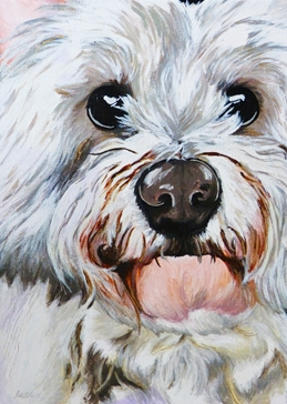Art westie