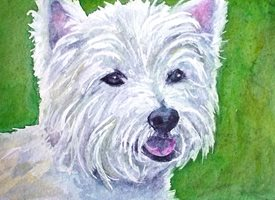 General artwork dog animals pets for-her for-him personalised online greeting card