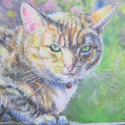 Art general cat, face, eyes, green eyes, looking, for-her personalised online greeting card