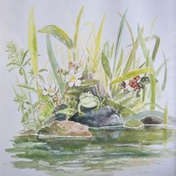 General frog, nature, water, animals, amphibian, flowers, wildlife, pool, pond, for-him,  for-her personalised online greeting card