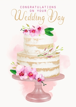 Little Bird Greetings Cards Naked Cake Wedding Day card wedding WEDDING celebration congratulations personalised online greeting card