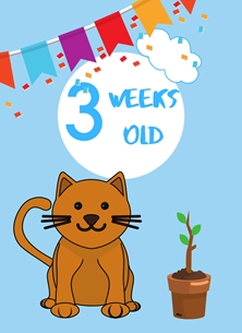 Cat,Banner,Milestone 3 weeks,Colourful, personalised online greeting card