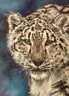 art snow leopards  nature wildlife  blue animals for-him for-her for-child big cats zoos stripes fur white blue zoos oils  general blank all occasions art him her  personalised online greeting card