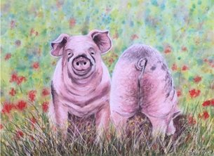 art pigs  farm animal nature funny personalised online greeting card