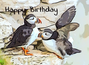 birthday BIRTHDAY, him, her, girl, boys, daughters, son, birds, seabird, nature, wildlife, Child, Children for-him for-her for-child personalised online greeting card