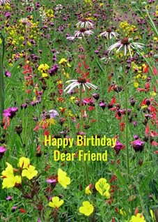 Birthday Friend flowers personalised online greeting card