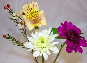 General Photography Birthday, her, mum, daughter, grandma, Flower, bouquet, purple, yellow, white, chrysanthemums, for-her mother's day personalised online greeting card