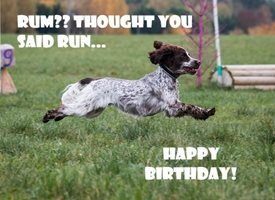 Birthday Dog Spaniel Cute SARR personalised online greeting card