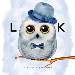 birthday Owl, Animal, Cute, for-him, for-her for-children personalised online greeting card