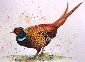 art artwork pheasant birds wildlife for-her for-him personalised online greeting card