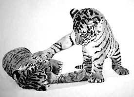General artwork tiger animals zoo wildlife monochrome for-him for-her personalised online greeting card