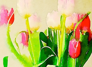 General Tulips tulip flowers bunch anniversary birthday general personalised online greeting card