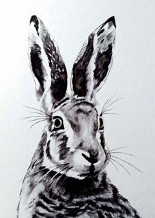 General artwork hare animal wildlife monochrome for-her for-him personalised online greeting card