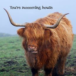Gary Green Eyes Highland Cow Mooooving House home Highland Cow Cattle personalised online greeting card