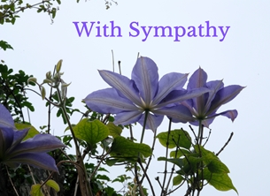 Debbie Daylights Sympathy Clematis Sympathy sympathy flowers purple clematis for-her for-him personalised online greeting card