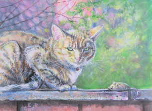 Little Liz Happy Art Cat and mouse Art general cat, for-her mouse, green eyes, outdoors,  personalised online greeting card