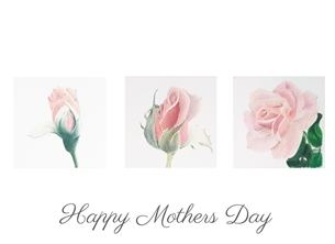 Sophie Louise Creates Mothers Day Rose Mothers rose, mothers day, FOR HER, mother, grandmother, floral, flowers, pink personalised online greeting card