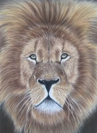 Art lion wildlife animal  big cat personalised online greeting card