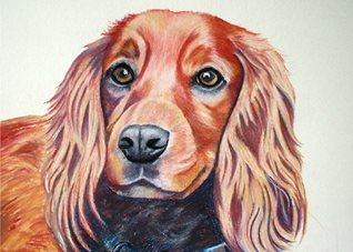 General artwork dog animals pet for-her for-him personalised online greeting card
