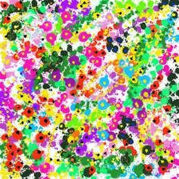 general multicoloured