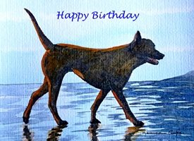 EmilyJane Walk on the Beach Birthday artwork dog animals pets beach for-him for-her personalised online greeting card