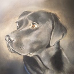 Mary Dodd Art Pepper Art Black Labrador Dog painting fine art dogs personalised online greeting card