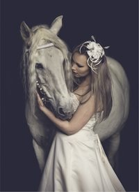 photography  greeting cards by EJ Lazenby Fine Art horse, bride,  white horse,