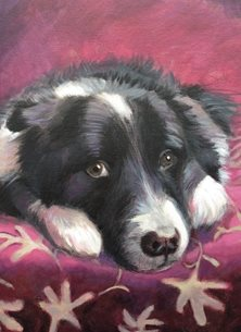 Mary Dodd Art Bonney artist General Black Collie Dog painting art card artist portrait dogs personalised online greeting card