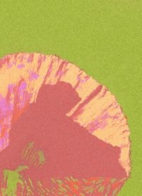 General green red flower stencil simple clean monk quiet contemplative fathers for-him  personalised online greeting card