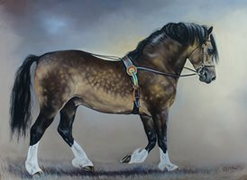 Art Equine, horse, pony, welsh cob, cob,. stallion animals z%a personalised online greeting card