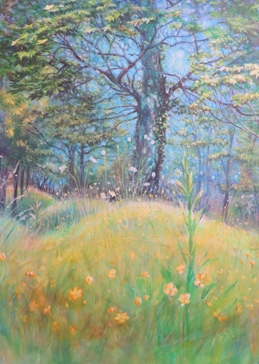 art flowers, wild flowers, buttercups, yellow, meadow, trees, blue sky, sunny day,  personalised online greeting card