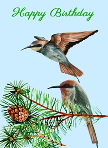 Bee-eater Birthday Cards