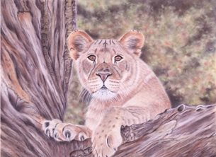 Art Lion cub wildlife animal nature personalised online greeting card
