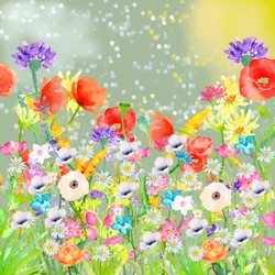 General Summer, Meadow, Flowers, Poppies, birthday personalised online greeting card